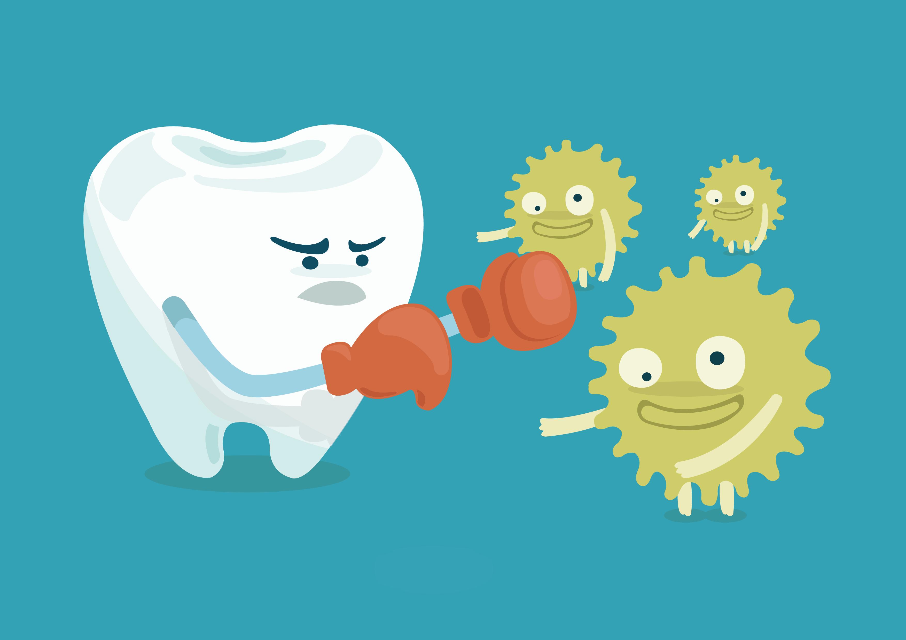 La plaque dentaire
